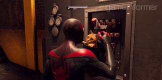Spidey-Cat